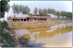 Technical Updates | Fisheries Department, Haryana,